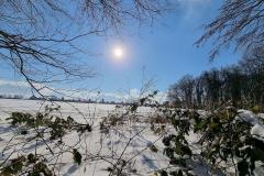 winter2021_06