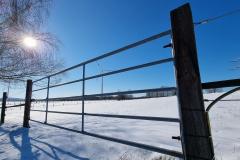 winter2021_10