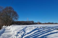 winter2021_15