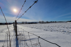 winter2021_16