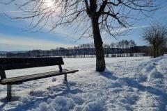 winter2021_17